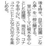こんなステキな記事が!!!