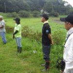 アジサイ畑の草刈り+池干し大作戦