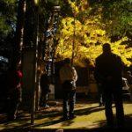 宮崎県諸塚村立岩地区桂「霜月祭り」