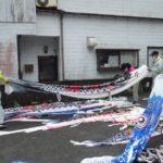 日之影町商工会青年「鯉のぼり撤収」のお手伝い